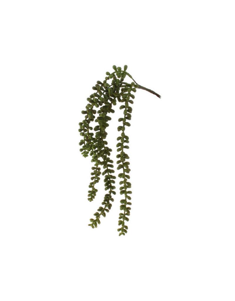16.5in Hanging Succulent