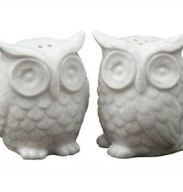 Creative Co-Op Ceramic Owl Salt & Pepper Shaker