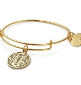 Alex and Ani Color Infusion, Godspeed EWB, SG