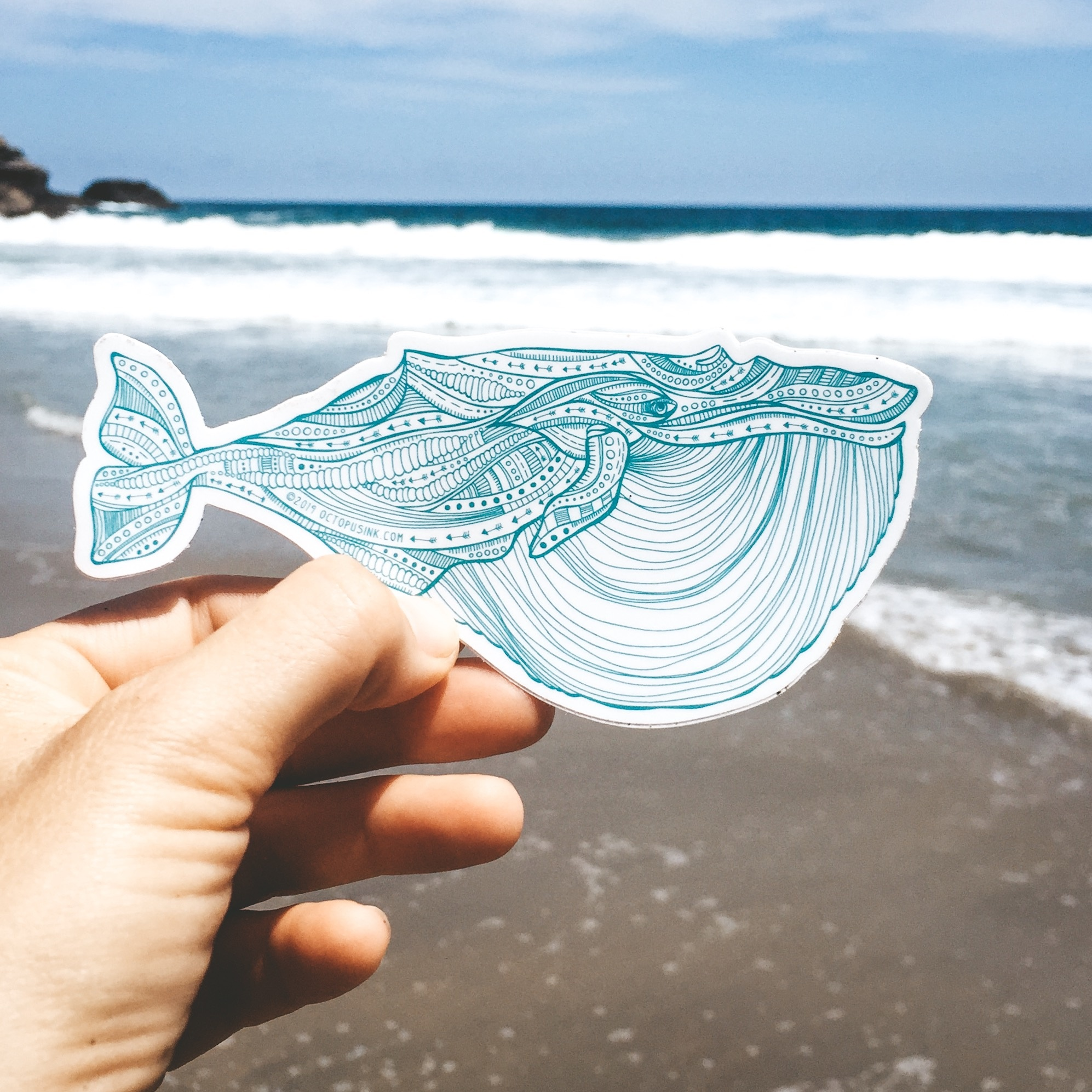 Blue Whale- Decal