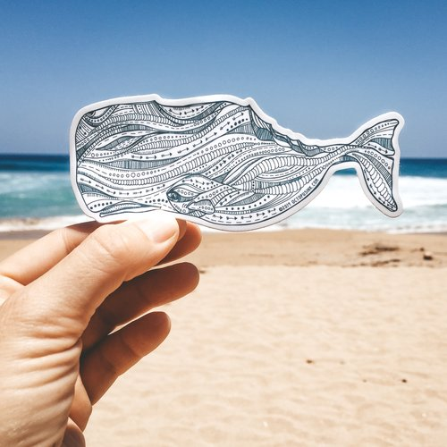 Sperm Whale- Decal