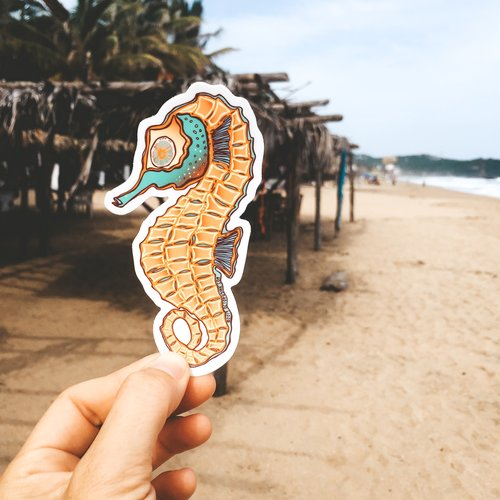 Seahorse- Decal Orange