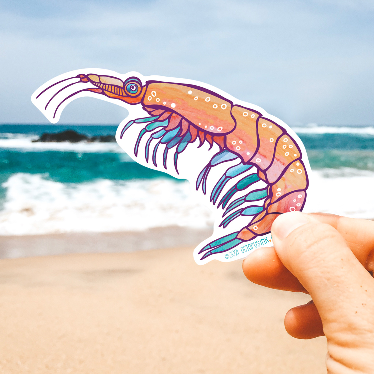 Krill- Decal