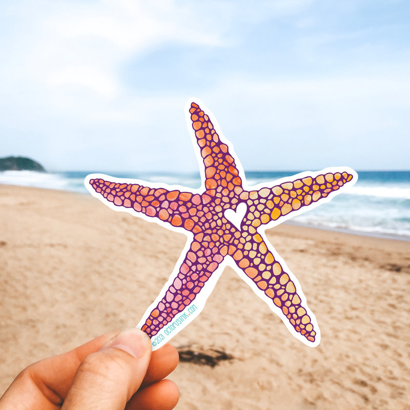 Sea Star- Decal