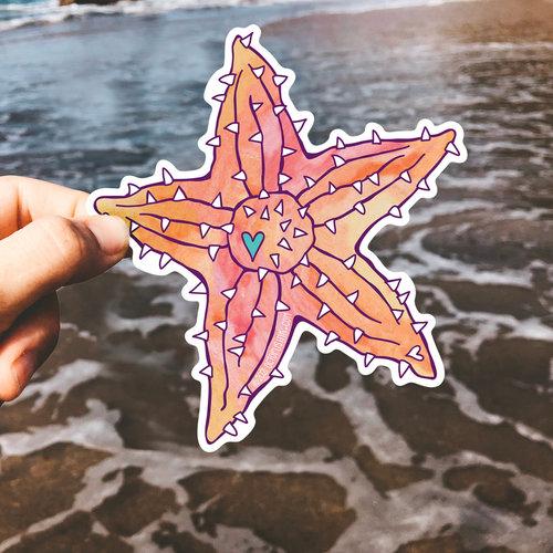 Cushion Starfish- Decal