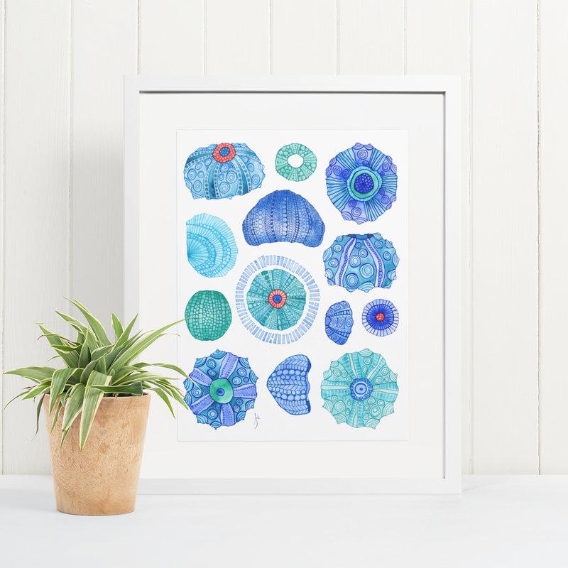 Thirteen Urchins- 11 x 14 Giclee