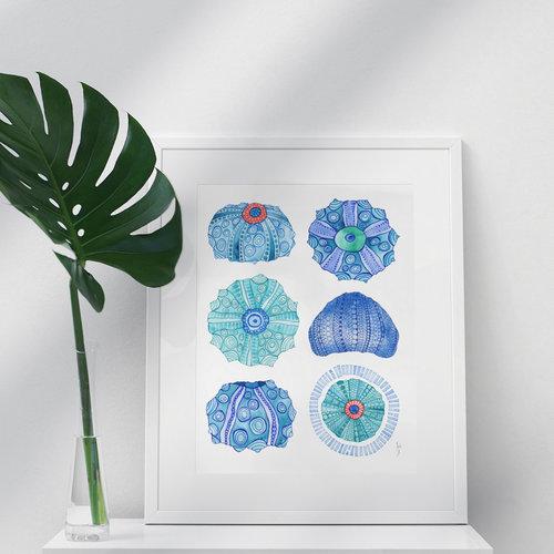 Six Urchins- 11 x 14 Giclee