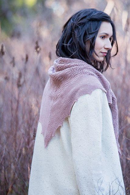 Image of Peregrine