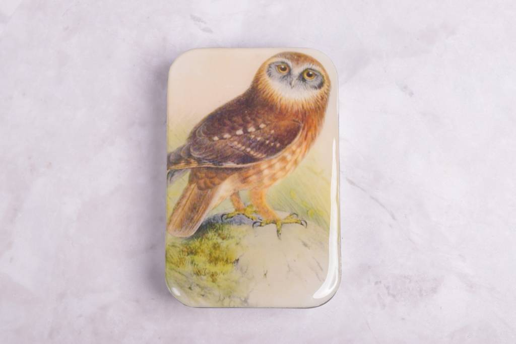 Image of Firefly Notes Woodland Friends Notion Tin Set, Owl