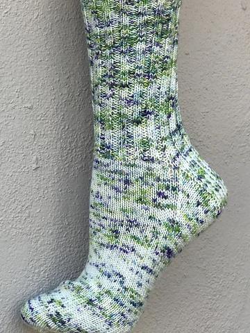Image of F813 Basic Socks