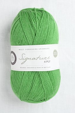 Image of WYS Signature 4 Ply 395 Chocolate Lime