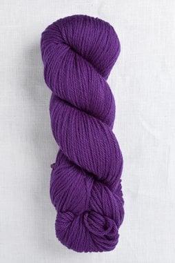 Image of Cascade 220 9570 Concord Grape