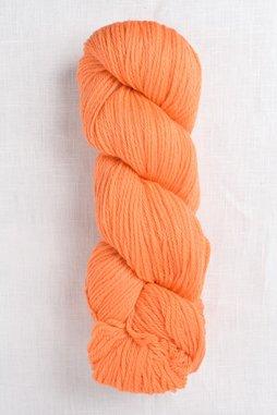 Image of Cascade 220 9615 Bright Nectarine