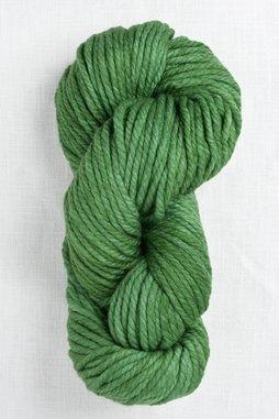 Image of Malabrigo Chunky 117 Verde Adriana