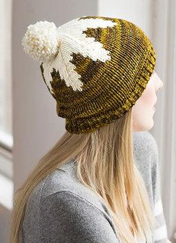 Image of Malabrigo Estrella Hat Kit