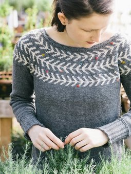 Image of Branches & Buds Pullover