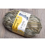 Image of Schachenmayr Regia 4 Ply  4491 Olive Green