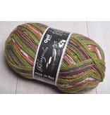 Image of Opal 4 ply Sock Yarn 9045 Play it Again