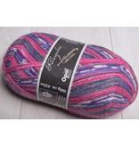 Image of Opal 4 ply Sock Yarn 9043 Ellington