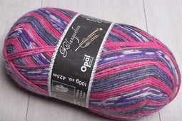Image of Opal 4 ply Sock Yarn 9043 Ellington