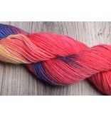 Image of Lorna's Laces Shepherd Sock Lorikeet