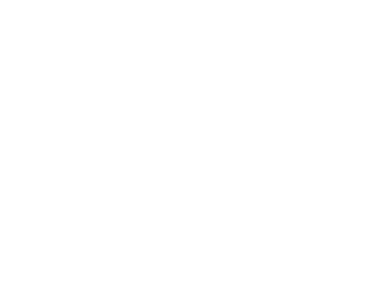 Wool and Company Fine Yarn