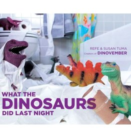 HACHETTE BOOK GROUP WHAT THE DINOSAURS DID LAST NIGHT HB TUMA