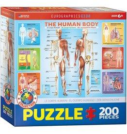 EUROGRAPHICS HUMAN BODY 200 PC PUZZLE*