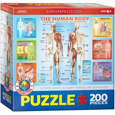 EUROGRAPHICS HUMAN BODY 200 PC PUZZLE
