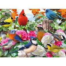 RAVENSBURGER USA GARDEN BIRDS 500 PIECE