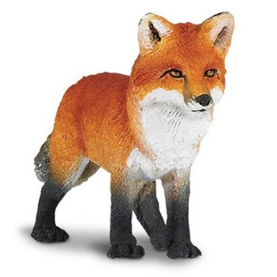 SAFARI FOX SAFARI