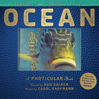 WORKMAN PUBLISHING OCEAN PHOTICULAR BOOK HB KAINEN