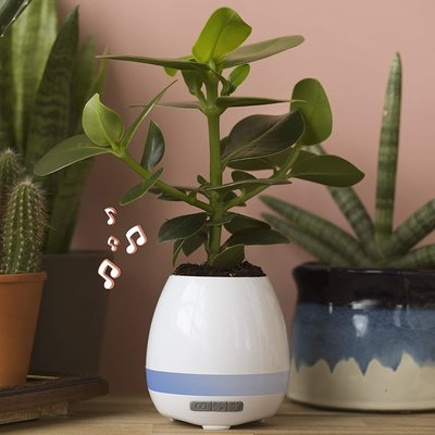 THUMBS UP PLANT POT SPEAKER