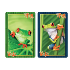SPRINGBOK BRIDGE PLAYING CARDS