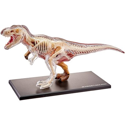TEDCO 4D VISION T-REX ANATOMY
