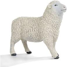 SAFARI SHEEP SAFARI