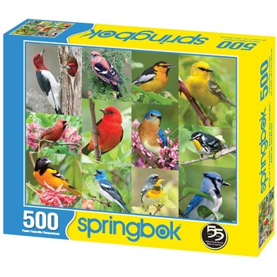 SPRINGBOK BIRDS OF A FEATHER 500 PIECE