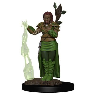 WIZKIDS DUNGEONS & DRAGONS: ICONS OF THE REALMS: PREMIUM FIGURES