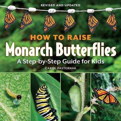 FIREFLY BOOKS HOW TO RAISE MONARCH BUTTERFLIES PB PASTERNAK
