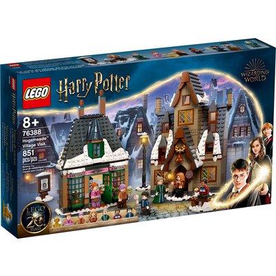 LEGO HOGSMEADE VILLAGE VISIT