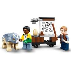 LEGO T. REX DINOSAUR FOSSIL EXHIBITION