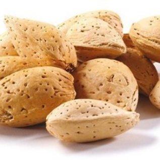 Raw Almonds in the Shell Bulk 1# Bulk Bag