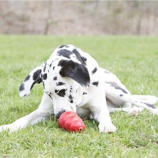 KONG Stuff'N Real Peanut Butter Dog Treat Tube 5oz