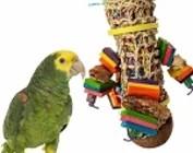 Large BIRDS                            (Amazon, African Grey, Mini Macaw, etc.)