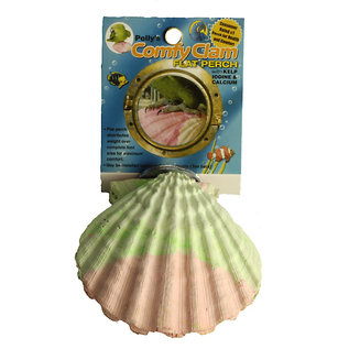 Polly's Comfy Clam Flat Perch Small