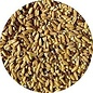 Top's Napoleon's Seed Mix 1 lb Bag