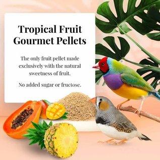 LAFEBER COMPANY Lafeber Tropical Fruit Gourmet Finch Pellets 1 lb