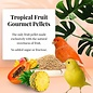 LAFEBER COMPANY Lafeber Tropical Fruit Gourmet Canary Pellets 1.25lb