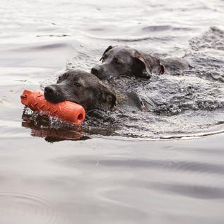 KONG Kong Dog Training Dummy Large