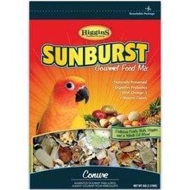 HIGGINS Higgins Sunburst Conure 3 #